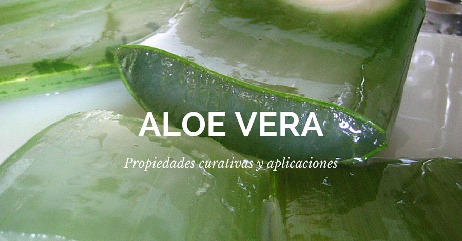 Propiedades y aplicaciones del aloe vera
